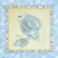Bubble Bath Shells III Fine Art Print