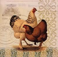 Chickens & Scrolls I Framed Print