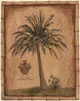 Caribbean Palm III With Bamboo Border Framed Print