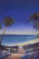 Tropical Path II Fine Art Print