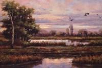 Marshland Fine Art Print