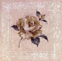 Jardin Rose ll Framed Print