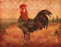 Florentine Rooster I Framed Print