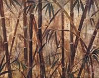 Bamboo Forest I Framed Print