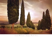 Cypress Road, Siena Fine Art Print