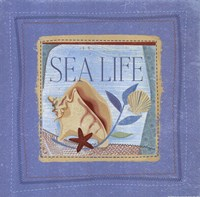 Sea Life Framed Print