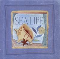 Sea Life Fine Art Print