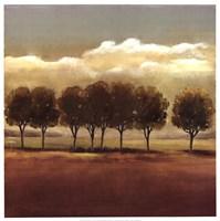 In A Row Fine Art Print