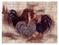 Rooster Trinity Framed Print