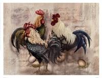 Rooster Trio Fine Art Print