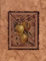 Citron Fructus Framed Print