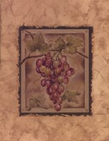 Raisin Fructus Framed Print