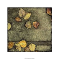 Wet Pavement II Framed Print