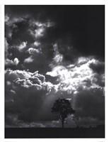 bate - The Veil Of The Sky Fine Art Print