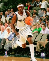 Jason Terry 2008-09 Action Fine Art Print
