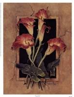 Framed Calla's Fine Art Print