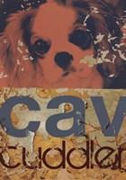 Cavalier Cuddler Framed Print