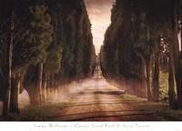Cypress Lined Road II, Siena Tuscany Fine Art Print
