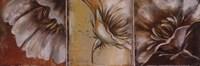 The Three Poppies II Fine Art Print