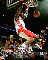 Jermaine O'Neal 2008-09 Action Fine Art Print
