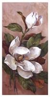 Magnolia Accents ll Framed Print