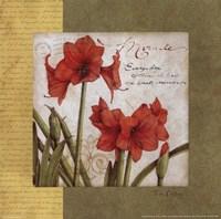 Garden Inspiration IV Framed Print