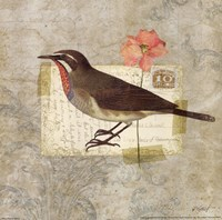Traveler Bird II Fine Art Print