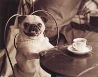 Cafe Pug Fine Art Print