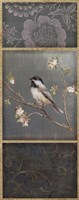 Black Capped Chickadee Fine Art Print