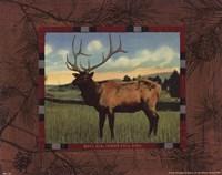 Elk I Fine Art Print