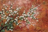 Wild Plum Blossoms Fine Art Print
