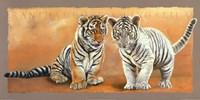 Oh my Sister! Ranthambore et Singalila Fine Art Print