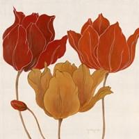 Austin's Tulips II Framed Print