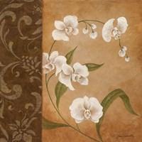 Orchid's Dance I Framed Print