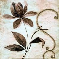 Floral Souvenir II Fine Art Print