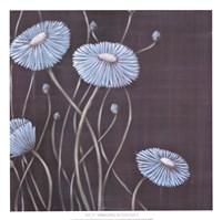 Springing Blossoms II Fine Art Print