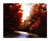 Maple Drive Fine Art Print