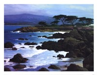 Coastline At Pacific Grove Fine Art Print