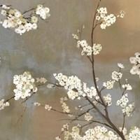 Ode to Spring I Framed Print