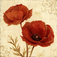 Poppy Bouquet I Fine Art Print