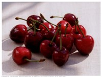 Morello Cherries II Fine Art Print