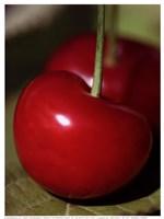 Bigarreau Cherries I Framed Print