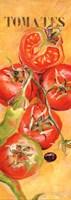 Le Jardin des tomates Fine Art Print