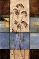 Highland Wildflowers I Fine Art Print