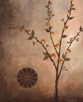 Fall Stems in the Light Framed Print