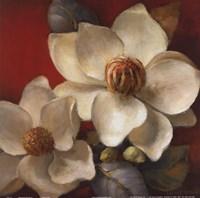 Magnolia Passion II Fine Art Print
