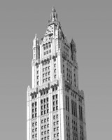 Woolworth Building, NY Fine Art Print