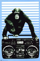 Monkey Boom Box Wall Poster