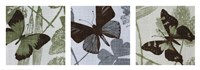 Meadow Triptych Fine Art Print