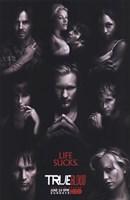 True Blood - RARE Season 2 Character Poster Fine Art Print